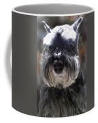 Schnauzer Portrait Coffee Mug