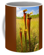 Schnell's Pitcher Plant Coffee Mug