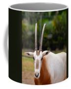 Scimitar Horned Oryx 2 Coffee Mug