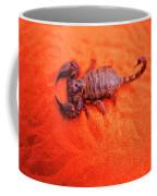 Scorpion Red Sand Sting Insect Coffee Mug