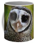 Scott Coffee Mug
