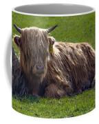 Scottish Highland Cattle 3                          Coffee Mug
