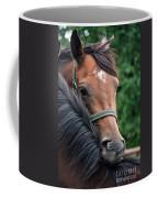 Scratch My Back Coffee Mug