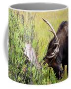 Scratching The Surface Coffee Mug