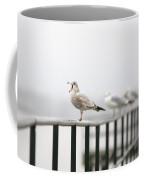 Screaming Seagull Coffee Mug