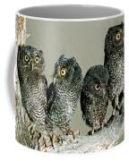 Screech Owl Chicks Coffee Mug