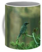 Scrub Jay Coffee Mug