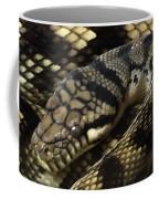 Scrub Python Abstraction Coffee Mug