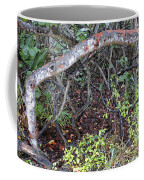 Sea Grape Jungle Coffee Mug