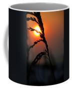 Sea Grass In The Sun Coffee Mug