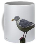 Sea Gull On The Dock On A Foggy Day Coffee Mug