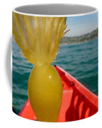 Sea Kayaking Find Coffee Mug