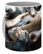 Sea Lion Dreams Coffee Mug