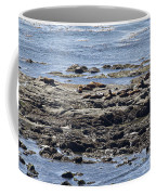 Sea Lion Resort Coffee Mug