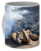 Sea Lions Seek Shelter Coffee Mug