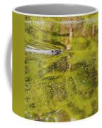 Sea Of Green Square Coffee Mug