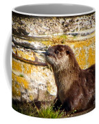 Sea Otter Coffee Mug
