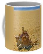 Sea Shell By The Sea Shore Coffee Mug