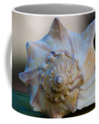 Sea Shell Coffee Mug