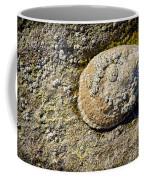 Sea Shell Rock Coffee Mug