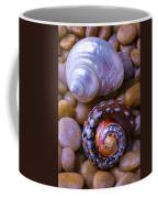 Sea Snail Shells Coffee Mug