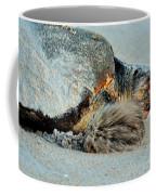 Sea Turtle Heading Back To Sea  Coffee Mug