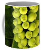 Seagrape Cluster Coffee Mug