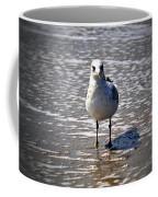 Seagull At Low Tide Coffee Mug