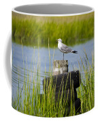 Seagull At Weeks Landing Coffee Mug by Bill Cannon