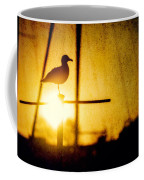 Seagull In Harbor Sunset Coffee Mug