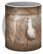 Seagull In Sephia Coffee Mug