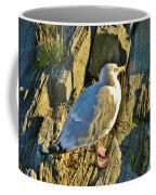 Seagull In Shadow Coffee Mug