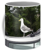 Seagull On Car Coffee Mug
