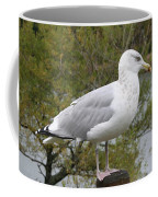 Seagull Outlook Coffee Mug