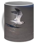 Seagull Preparing To Fly Coffee Mug