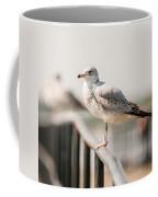 Seagull Standing On Rail Coffee Mug