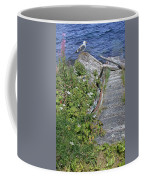 Seagull Steps Guard Island Alaska Coffee Mug