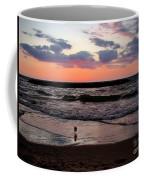 Seagull With Sunset Coffee Mug