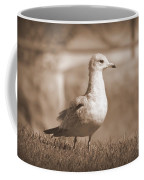 Seagulls 2 Coffee Mug