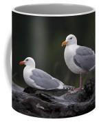 Seagulls Coffee Mug by Gary Langley