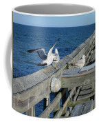 Seagulls Coffee Mug by Nelson Watkins