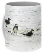Seagulls On The Beach Coffee Mug