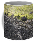 Seal - Montague Island - Austrlalia Coffee Mug