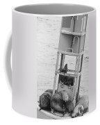 Seal Hammock Black And White Coffee Mug