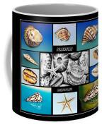 Seashell Collection Coffee Mug by Kaye Menner