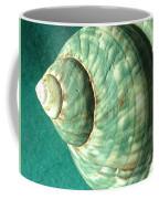 Seashell In Sunlight2 Coffee Mug