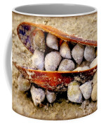 Seashell Reunion Coffee Mug