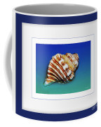 Seashell Wall Art 1 - Blue Frame Coffee Mug