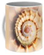 Seashell Wall Art 11 - Spiral Of Harpa Ventricosa Coffee Mug