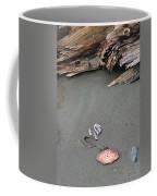 Seashells On The Seashore II Coffee Mug